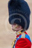Trooping the Colour 2015. Image #661, 13 June 2015 12:09 Horse Guards Parade, London, UK
