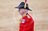 Trooping the Colour 2015. Image #666, 13 June 2015 12:09 Horse Guards Parade, London, UK