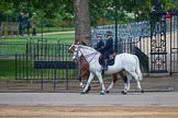 The Colonel's Review 2016. Horse Guards Parade, Westminster, London,  United Kingdom, on 04 June 2016 at 09:17, image #6