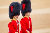 The Colonel's Review 2016. Horse Guards Parade, Westminster, London,  United Kingdom, on 04 June 2016 at 10:00, image #22