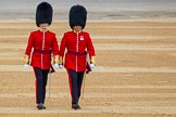The Colonel's Review 2016. Horse Guards Parade, Westminster, London,  United Kingdom, on 04 June 2016 at 10:01, image #23