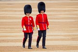 The Colonel's Review 2016. Horse Guards Parade, Westminster, London,  United Kingdom, on 04 June 2016 at 10:01, image #24