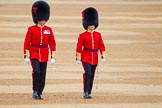 The Colonel's Review 2016. Horse Guards Parade, Westminster, London,  United Kingdom, on 04 June 2016 at 10:03, image #25