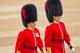 The Colonel's Review 2016. Horse Guards Parade, Westminster, London,  United Kingdom, on 04 June 2016 at 10:05, image #27