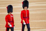 The Colonel's Review 2016. Horse Guards Parade, Westminster, London,  United Kingdom, on 04 June 2016 at 10:07, image #28