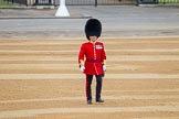 The Colonel's Review 2016. Horse Guards Parade, Westminster, London,  United Kingdom, on 04 June 2016 at 10:08, image #29