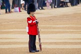 The Colonel's Review 2016. Horse Guards Parade, Westminster, London,  United Kingdom, on 04 June 2016 at 10:13, image #33