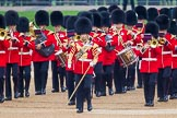 The Colonel's Review 2016. Horse Guards Parade, Westminster, London,  United Kingdom, on 04 June 2016 at 10:14, image #37