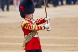 The Colonel's Review 2016. Horse Guards Parade, Westminster, London,  United Kingdom, on 04 June 2016 at 10:16, image #40