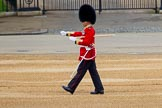 The Colonel's Review 2016. Horse Guards Parade, Westminster, London,  United Kingdom, on 04 June 2016 at 10:21, image #52