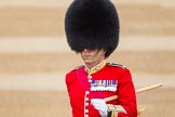 The Colonel's Review 2016. Horse Guards Parade, Westminster, London,  United Kingdom, on 04 June 2016 at 10:22, image #53