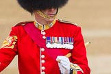 The Colonel's Review 2016. Horse Guards Parade, Westminster, London,  United Kingdom, on 04 June 2016 at 10:22, image #54