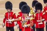 The Colonel's Review 2016. Horse Guards Parade, Westminster, London,  United Kingdom, on 04 June 2016 at 10:26, image #66