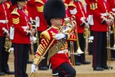 The Colonel's Review 2016. Horse Guards Parade, Westminster, London,  United Kingdom, on 04 June 2016 at 10:27, image #68
