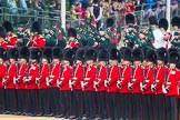 The Colonel's Review 2016. Horse Guards Parade, Westminster, London,  United Kingdom, on 04 June 2016 at 10:28, image #70