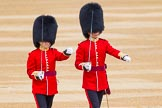 The Colonel's Review 2016. Horse Guards Parade, Westminster, London,  United Kingdom, on 04 June 2016 at 10:29, image #75