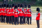 The Colonel's Review 2016. Horse Guards Parade, Westminster, London,  United Kingdom, on 04 June 2016 at 10:29, image #76