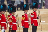 The Colonel's Review 2016. Horse Guards Parade, Westminster, London,  United Kingdom, on 04 June 2016 at 10:31, image #80
