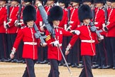 The Colonel's Review 2016. Horse Guards Parade, Westminster, London,  United Kingdom, on 04 June 2016 at 10:32, image #82