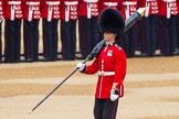 The Colonel's Review 2016. Horse Guards Parade, Westminster, London,  United Kingdom, on 04 June 2016 at 10:32, image #84