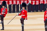 The Colonel's Review 2016. Horse Guards Parade, Westminster, London,  United Kingdom, on 04 June 2016 at 10:32, image #85