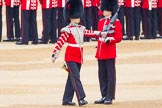 The Colonel's Review 2016. Horse Guards Parade, Westminster, London,  United Kingdom, on 04 June 2016 at 10:34, image #87
