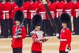 The Colonel's Review 2016. Horse Guards Parade, Westminster, London,  United Kingdom, on 04 June 2016 at 10:34, image #88