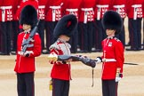 The Colonel's Review 2016. Horse Guards Parade, Westminster, London,  United Kingdom, on 04 June 2016 at 10:34, image #90
