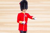 The Colonel's Review 2016. Horse Guards Parade, Westminster, London,  United Kingdom, on 04 June 2016 at 10:34, image #91