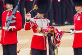 The Colonel's Review 2016. Horse Guards Parade, Westminster, London,  United Kingdom, on 04 June 2016 at 10:34, image #93