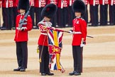The Colonel's Review 2016. Horse Guards Parade, Westminster, London,  United Kingdom, on 04 June 2016 at 10:35, image #94