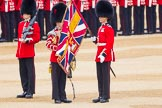 The Colonel's Review 2016. Horse Guards Parade, Westminster, London,  United Kingdom, on 04 June 2016 at 10:35, image #96