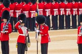The Colonel's Review 2016. Horse Guards Parade, Westminster, London,  United Kingdom, on 04 June 2016 at 10:35, image #97