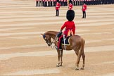 The Colonel's Review 2016. Horse Guards Parade, Westminster, London,  United Kingdom, on 04 June 2016 at 10:36, image #100