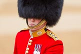 The Colonel's Review 2016. Horse Guards Parade, Westminster, London,  United Kingdom, on 04 June 2016 at 10:39, image #113