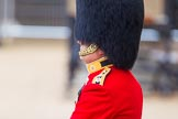 The Colonel's Review 2016. Horse Guards Parade, Westminster, London,  United Kingdom, on 04 June 2016 at 10:40, image #114
