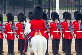 The Colonel's Review 2016. Horse Guards Parade, Westminster, London,  United Kingdom, on 04 June 2016 at 10:42, image #117