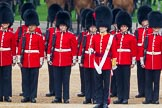 The Colonel's Review 2016. Horse Guards Parade, Westminster, London,  United Kingdom, on 04 June 2016 at 10:43, image #119