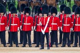 The Colonel's Review 2016. Horse Guards Parade, Westminster, London,  United Kingdom, on 04 June 2016 at 10:43, image #120