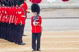 The Colonel's Review 2016. Horse Guards Parade, Westminster, London,  United Kingdom, on 04 June 2016 at 10:44, image #122