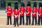 The Colonel's Review 2016. Horse Guards Parade, Westminster, London,  United Kingdom, on 04 June 2016 at 10:47, image #126