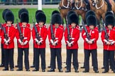 The Colonel's Review 2016. Horse Guards Parade, Westminster, London,  United Kingdom, on 04 June 2016 at 10:47, image #127