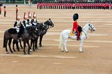 The Colonel's Review 2016. Horse Guards Parade, Westminster, London,  United Kingdom, on 04 June 2016 at 10:57, image #151