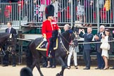 The Colonel's Review 2016. Horse Guards Parade, Westminster, London,  United Kingdom, on 04 June 2016 at 10:58, image #157