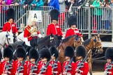 The Colonel's Review 2016. Horse Guards Parade, Westminster, London,  United Kingdom, on 04 June 2016 at 10:59, image #164