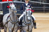 The Colonel's Review 2016. Horse Guards Parade, Westminster, London,  United Kingdom, on 04 June 2016 at 10:59, image #167