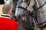 The Colonel's Review 2016. Horse Guards Parade, Westminster, London,  United Kingdom, on 04 June 2016 at 11:00, image #175