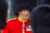 The Colonel's Review 2016. Horse Guards Parade, Westminster, London,  United Kingdom, on 04 June 2016 at 11:01, image #191
