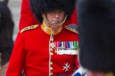 The Colonel's Review 2016. Horse Guards Parade, Westminster, London,  United Kingdom, on 04 June 2016 at 11:01, image #192