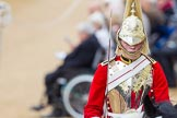 The Colonel's Review 2016. Horse Guards Parade, Westminster, London,  United Kingdom, on 04 June 2016 at 11:01, image #194